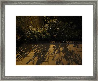 Branches Over The Wall Framed Print by Guy Ricketts