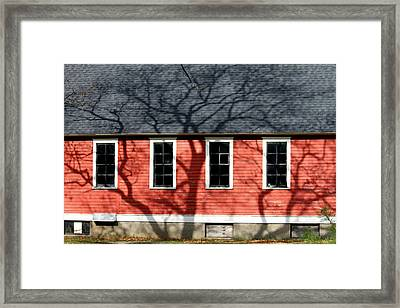 Framed Print featuring the photograph Branching Out by Mark J Seefeldt