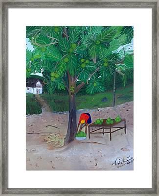 Breadfruit Framed Print