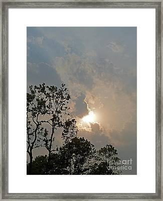 Framed Print featuring the photograph Break Through by Louise Peardon