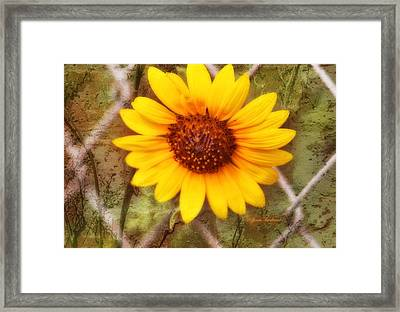 Framed Print featuring the photograph Breaking Out by Joan Bertucci