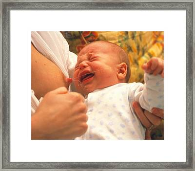 Breast-feeding: Baby's Crying Causes Milk Flow Framed Print by David Parker