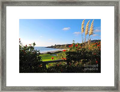 Framed Print featuring the photograph Breathe In by Johanne Peale