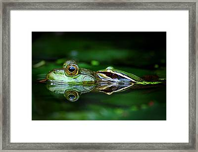 Breed To Breathe Framed Print by Suhaimisalleh