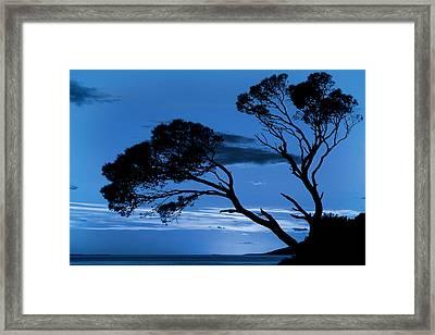 Brela Blue Version Framed Print