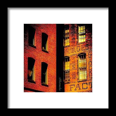 Follow Framed Prints