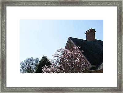 Framed Print featuring the photograph Brick And Blossom by Pamela Hyde Wilson