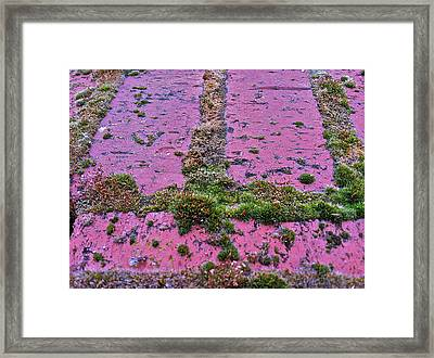 Framed Print featuring the photograph Brick Wall by Bill Owen