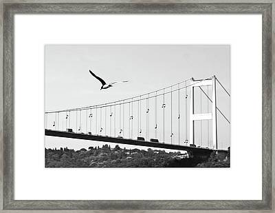 Bridge And Seagull, Bosphorus, Istanbul, Turkey Framed Print