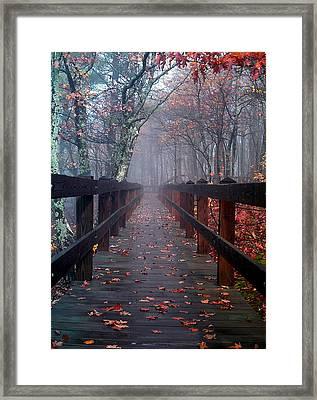 Bridge To Mist Woods Framed Print