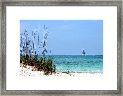 Framed Print featuring the photograph Bright Blue by Ginny Schmidt