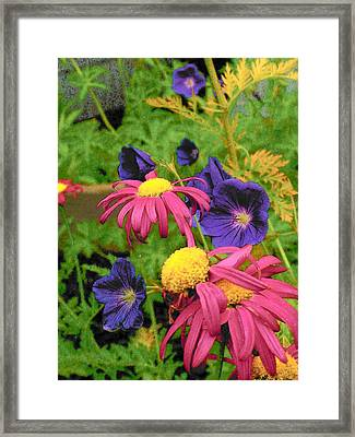 Bright Colors Framed Print by Wide Awake Arts