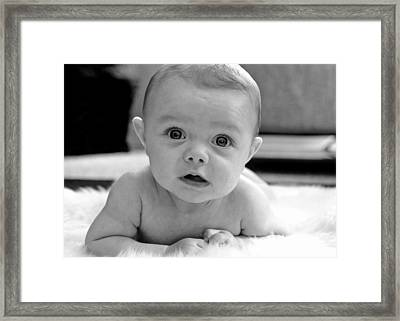Bright Eyes Framed Print by Lisa Phillips