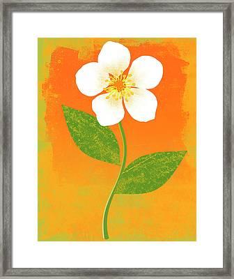 Bright Flower Framed Print
