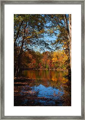 Brilliance From The Cove Framed Print