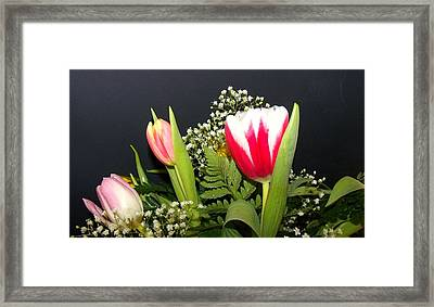 Brilliant Flowers Framed Print by Jose Lopez