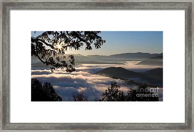Brilliant Foggy Dawn Framed Print by Matt Tilghman