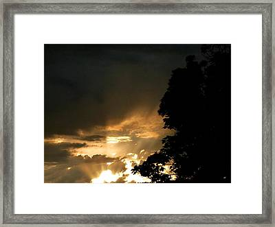 Brilliant Rays Framed Print by Will Borden