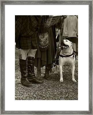 British Bulldog Framed Print by Scott Hovind