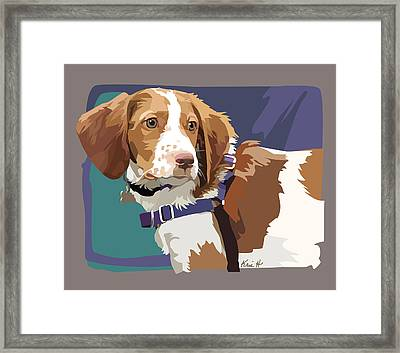 Brittany Boy   Framed Print by Kris Hackleman