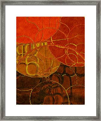Brocade Circles No.2 Framed Print by Bonnie Bruno