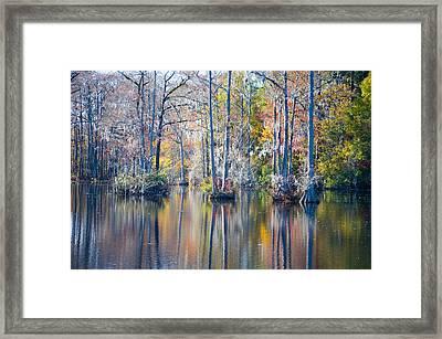 Brock Millpond 5 Framed Print by Rob Hemphill