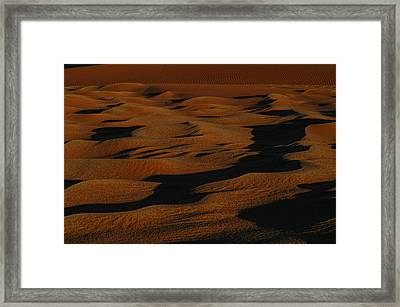 Bronze Framed Print