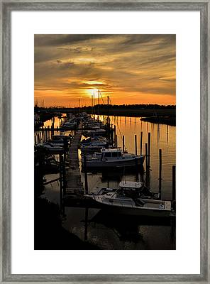 Framed Print featuring the photograph Bronze by Brian Hughes