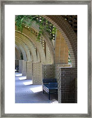 Brookgreen Arches Framed Print