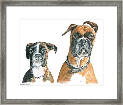 Brooklyn Boxers Framed Print by Marla Saville