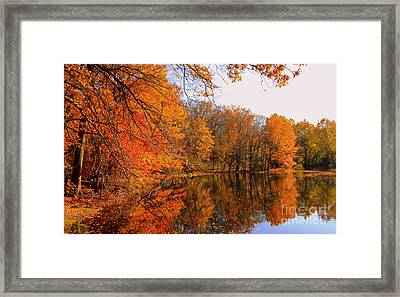 Brooks Pond   Framed Print