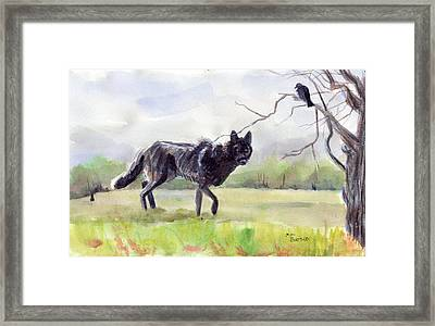 Brother Crow Announces The Arrival Of Brother Wolf Framed Print by Mimi Boothby