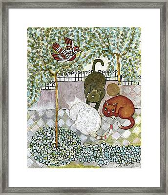Brown And White Alley Cats Consider Catching A Bird In The Green Garden Framed Print