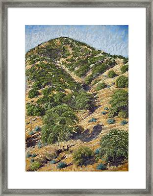 Brown Canyon Framed Print