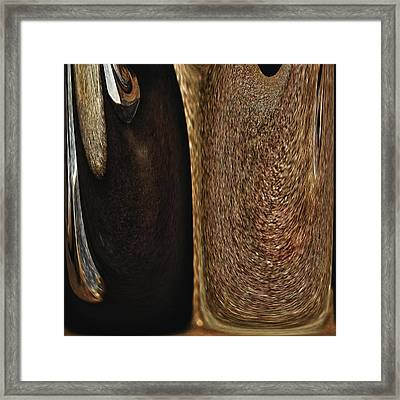 Brown Metal Framed Print by Skip Nall