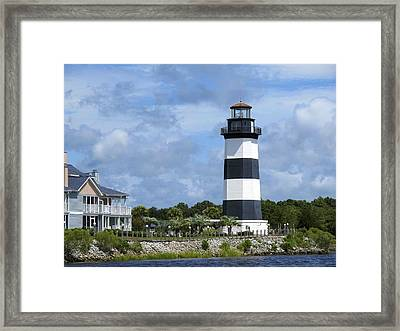 Brown Top Framed Print