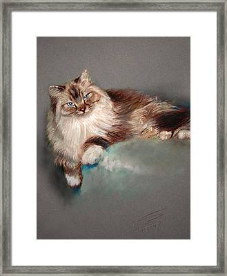Browny White Framed Print