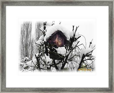 Framed Print featuring the photograph Brrr-rr-die by Sadie Reneau