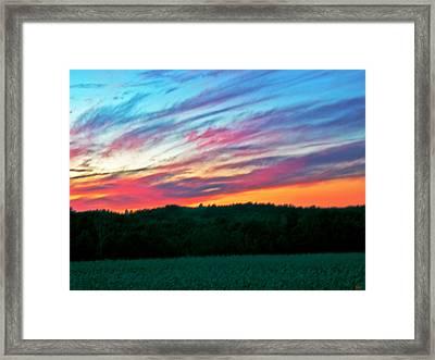 Brush Marks Of Nature Framed Print