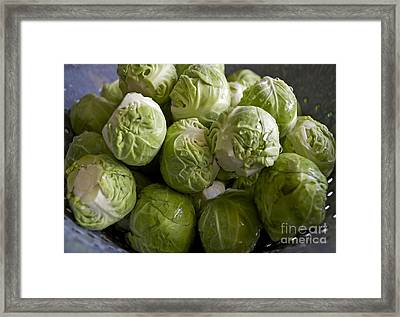 Brussel Sprouts Framed Print by Gwyn Newcombe