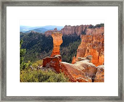 Bryce Canyon Beauty Framed Print