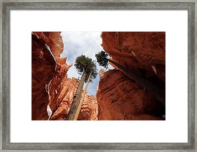 Framed Print featuring the photograph Bryce Canyon Towering Hoodoos by Karen Lee Ensley
