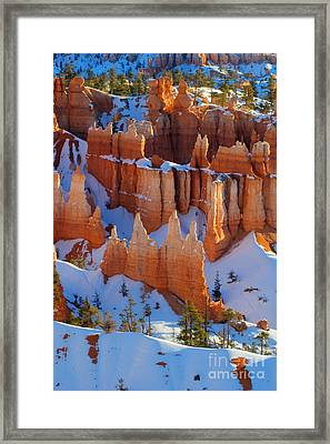 Bryce Canyon Winter 12 Framed Print by Bob Christopher