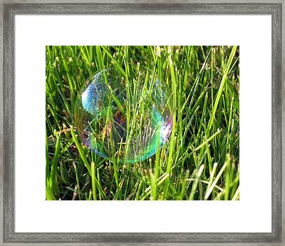 Framed Print featuring the photograph Bubble In The Grass by Darleen Stry