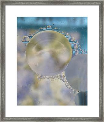 Bubbles And Blubs Framed Print