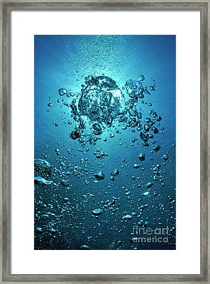 Bubbles Moving Up To Surface Framed Print by Sami Sarkis
