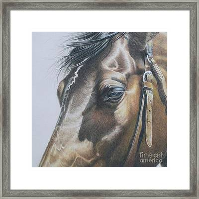 Buckles And Belts In Colored Pencil Framed Print by Carrie L Lewis