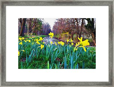 Bucks County Spring Framed Print by Bill Cannon