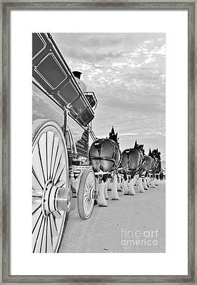 Bud Hitch B-w Framed Print by Lynda Dawson-Youngclaus