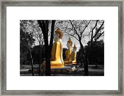 Buddha In The Jungle Framed Print